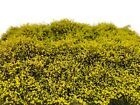 Martin Welberg SELG Light Green High Bushes Thicket Model Ground Cover Scenery