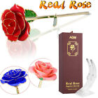 24K Gold Rose Dipped Flower Real Long Stem Mothers Day Valentines Love Gift US