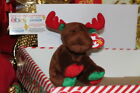 TY BEANIE BABY TRIMMINGS THE MOOSE-7 1/2