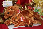 TY BEANIES: 1 BUDDY & 1 BABY OF FITZ THE BROWN DOGS-2004-BAD TAG-NICE GIFT