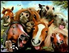 Horses Mane Selfie Smiling Funny Faces Small Blank Greeting Note Card NEW