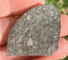 NWA 4522 LL3 Meteorite 53g Beautiful Slice Low Tkw 949