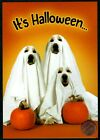HALLOWEEN Puppy Dogs Ghosts Sheets Pumpkins Halloween Greeting Card NEW