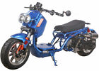 ICE BEAR Newest MADDOG 49cc FULL SIZE Motor Bike Gas Scooter Moped Street Legal