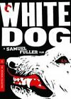 White Dog DVD 2008 Criterion Collection Kristy McNichol Paul Winfield OOP