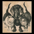 DACHSHUND AND TWO CATS Rubber Stamp A Group of Animal Buddies Rubber Stamp NEW