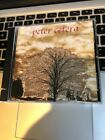 Another Perfect World by Peter Cetera (CD, Mar-2001, DDE, Inc.)