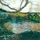WIDE MAJESTIC AIRE - TREMBLING BELLS [CD]