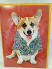 NIP Papyrus Fathers Day Card Dog 3 D Coat with Buttons 595 Retail