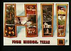 Large Letter Like Modern postcard Mission TX Texas HI fruit palm trees