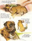 A BOY  HIS BOXER DOG Vintage Full Page Art Print by RIEN POORTVLIET