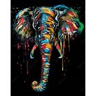DIY Paint by Number Kit For Adults Acrylic Canvas Colorful Elephant Jungle Anima