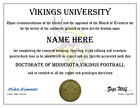 Minnesota Vikings Collecting and Fan Guide 17