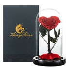 Beauty and The Beast Eternal Heart Shaped Preserved Rose In Glass Christmas Gift