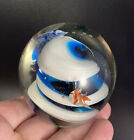 Art Glass Swirled Blue White Paperweight Controlled Bubbles  Fish