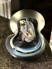 UNIQUE BEAUTIFUL EXCELLENT HENRY SUMMA NEW MEXICO ART GLASS PAPERWEIGHT SIGNED