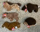 Ty Beanie Baby Lot Of 5 With Tags - Derby Roam Prickles Paul Pecan