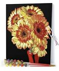 Opalberry Paint by Numbers for Adults Framed Canvas Adults Paint by Number Kit