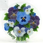 LIMITED EDITION Peggy Karr PANSY 1125 Round Plate Flower Fused Glass MIB