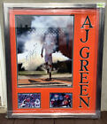 A.J. Green Cards, Rookie Cards and Memorabilia Guide 64