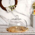 8 Glass Cloche Bell Jar Display Dome with Wooden Base perfect for Home Decor