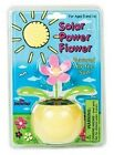 Solar Powered Flowers Swinging Sun Power Dancing Toy Assorted Colors Novelty