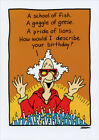 Describe Your Birthday Funny Birthday Card Greeting Card by Oatmeal Studios