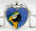 Blue and Yellow Macaw Parrot Silver Heart Shaped Photo Pendant with Leather Cord