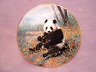 WS George Nature's Lovables Chinese Treasure Plate #3 - Panda by Charles Frace