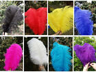 Wholesale 10 100pcs High Quality Natural OSTRICH FEATHERS 6 16inch 15 40cm