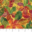 BY 1 2 YD GIVE THANKS NORTHCOTT FABRIC FALLING LEAVES ON GOLD FALL AUTUMN 20551