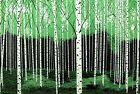 ONE DAY IN THE FOREST birch trees painting original oil on canvas green