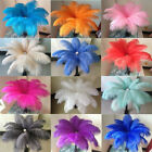 Wholesale 10 200 pcs high quality natural ostrich feathers 6 24 inch 15 60cm