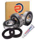Suzuki DR125 SM DR 125 2008-2013 Rear Wheel Bearings KIT + Seals