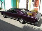 Pontiac GTO Hardtop Coupe 1967 pontiac gto just completed frame off restoration