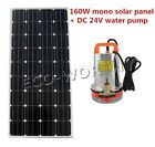 DC 24V Submersible Water Pump W 160Watt Mono Solar Panel for Watering Irrigating