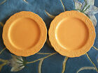 222 Fifth Petite Floral Orange Dinner Plates (2) French Provincial Scalloped 11