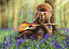 Bear Playing Guitar Avanti Funny Birthday Card Greeting Card by Avanti Press