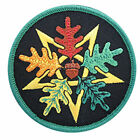 Oak Leaf Pentagram Patch Embroidered Iron On or Sew On Pagan Druid Wicca NEW
