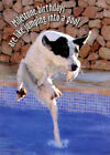 Dog Jumping Into Pool 60th Funny Birthday Card by Oatmeal Studios