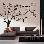 HOT Family Tree Bird Wall Sticker Photo Picture Frame Removable DIY Room Decal