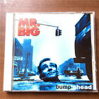 Mr.Big - Bump Ahead AMCY550 JAPAN CD N-935