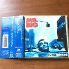 Mr. Big - Bump Ahead AMCY-550 JAPAN CD OBI W-1490