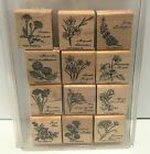 Stampin Up FLOWER OF THE MONTH Flowers Collage Floral Rubber Stamps Set Lot