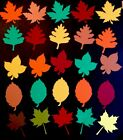 Fall Leaf Die Cut Embellishments Handmade With Card Stock Set Of 6