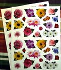 New Spring Flower Blossom Top 64 Acid Free Stickers Scrapbooking Card Making