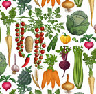 Vegetables Bold Graphic Bright Colour Natural Fabric Printed by Spoonflower BTY