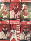 This Jayson Werth Chia Pet Giveaway Will Grow on You 17