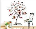 Photo Tree Family Kid Wall Removeble Art Stickers Vinyl Decal Wall Home Decor