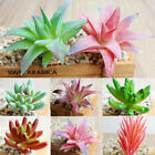 Artificial Succulents Plant Fake Mini Flower Garden Home Office DIY Floral Decor